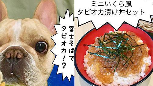 そば タピオカ 丼 富士